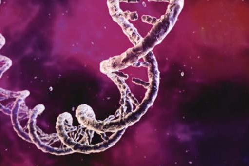 DNA 2.0