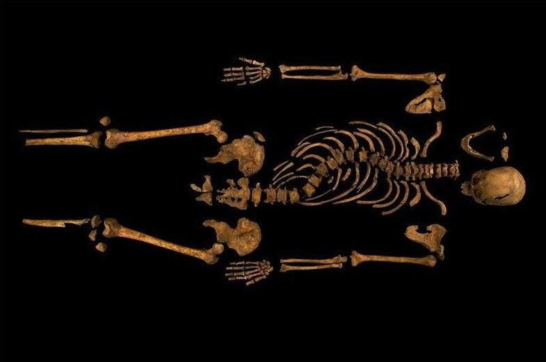 King Richard III's Bones Found Under English Parking Lot