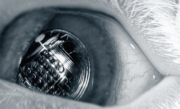 What if You Had a Reality-Augmenting Lens Right In Your Eye?