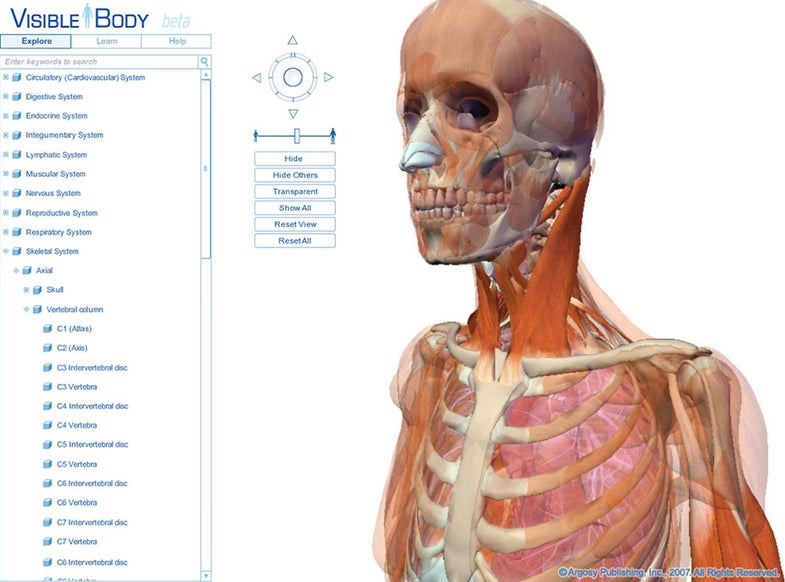 Explore the Human Body with an Online, 3-D Interactive Tool