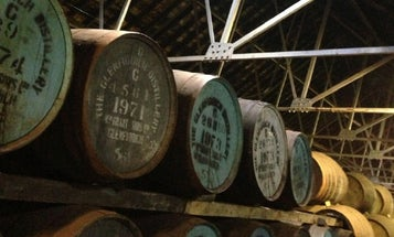 Whisky Aging and its Angels [SPONSORED ARTICLE]