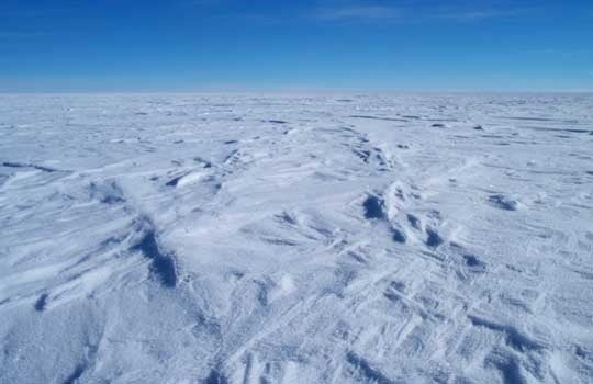 Thousands Of Species Found In Lake Vostok Ice
