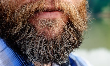 Beards Are Great At Trapping Icky Bacteria
