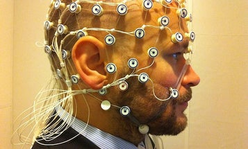 Use Your Body's Electrical Field To Uniquely Identify Yourself