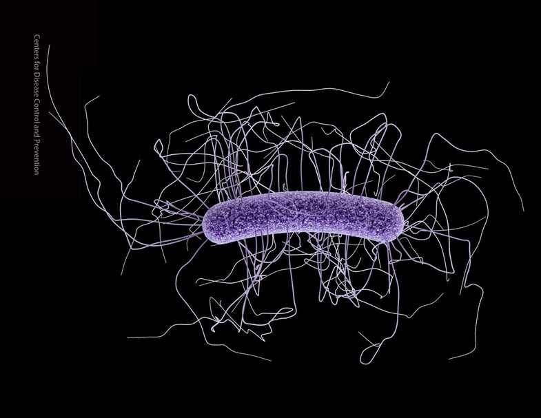 2 Million Americans Annually Get Infections That Antibiotics Can't Cure