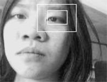 EyePhone: New Cellphone Software Tracks Users' Eye Movements For Control