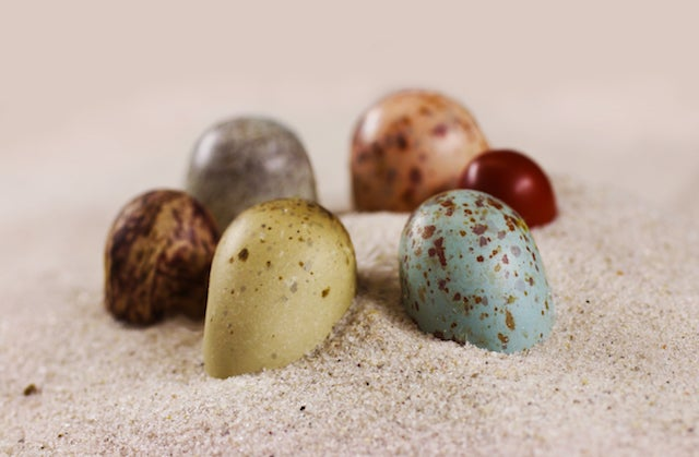 Six eggs in various colors including blue and yellow and red with brown spots, arranged in a circle on sand.