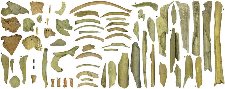 More Evidence That Neanderthals May Have Had Some Cannibalistic Tendencies