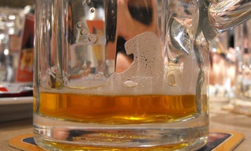 Plastic Microparticles Found In Beers