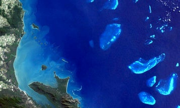 Plan To Save Great Barrier Reef Is 'Inadequate,' Scientists Say