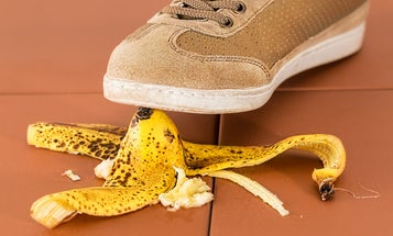 Death by banana peel? Black hole? The science behind your most absurd nightmares.