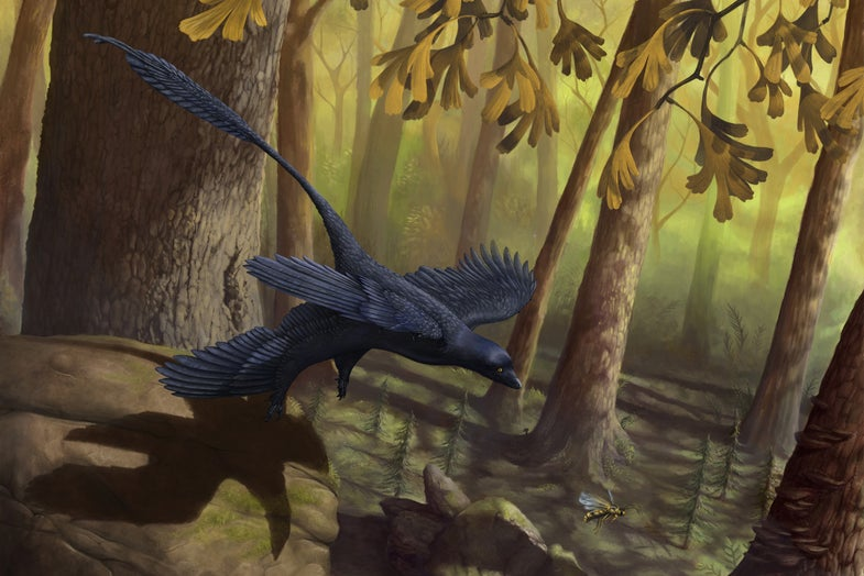 Watch A Dinosaur Fly In A Wind Tunnel