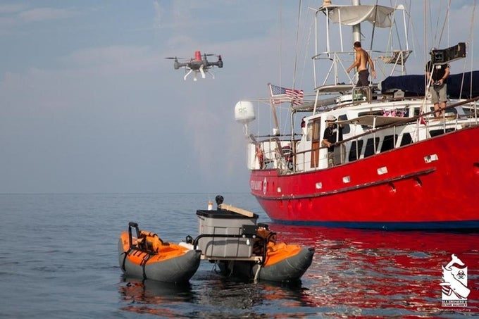 Scientists Want To Use Drones To Capture Whale Snot