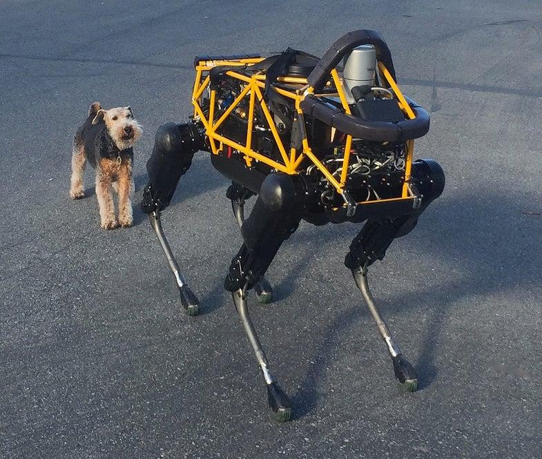 Fleshy Dog Hates Robot Dog