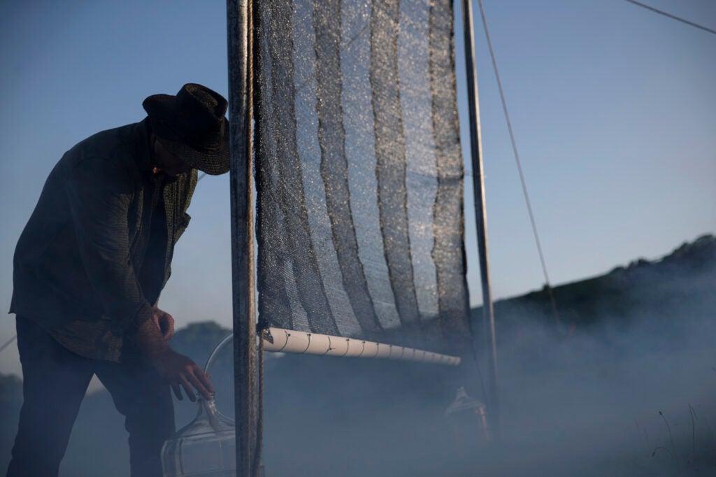 Chris Fogliatti and his fog catcher