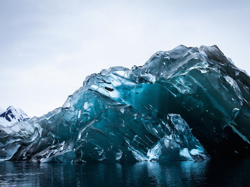 Upside-Down Icebergs, Living Fossil Sharks, And Other Amazing Images Of The Week
