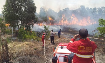 Toxic Smoke Chokes Indonesia
