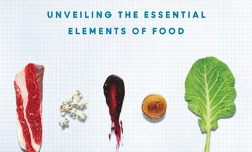 Under The Microscope, Food Has A Big Personality