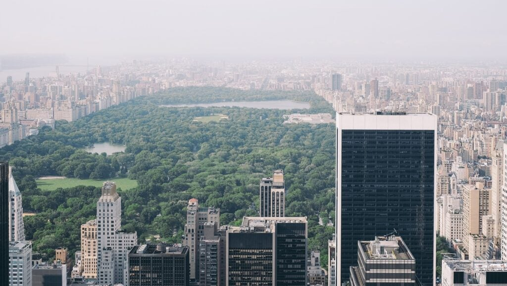 Central Park, New York City, on an especially polluted day.
