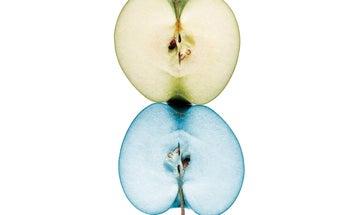 GMO Facts: 10 Common GMO Claims Debunked
