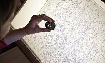 Recording A Century of Night Skies Through A Scanner Darkly