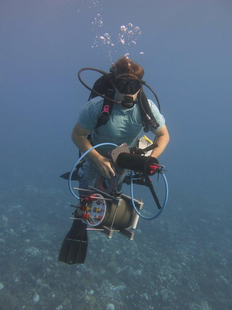 Microscope Underwater