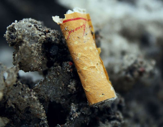 New Use for Cigarette Butts Makes Them Suddenly Worth the Cost of Recycling