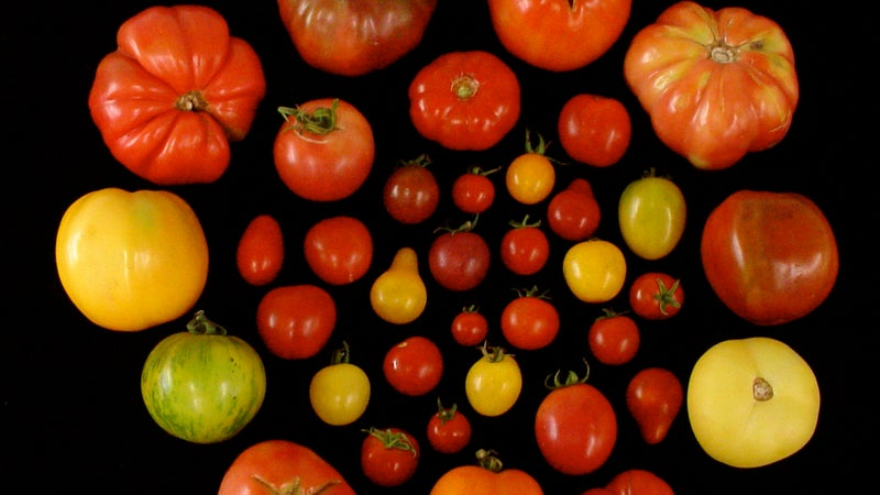 Here's how scientists are tricking you into eating your veggies