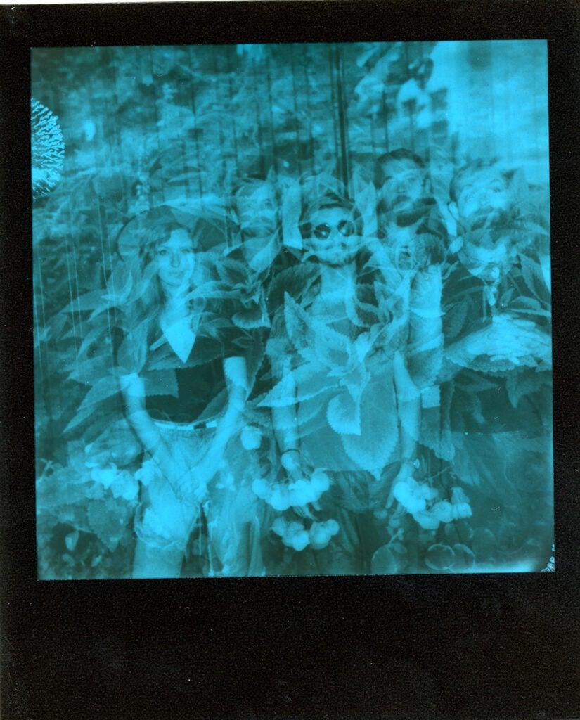 Polaroid Onestep+ sample negative nature