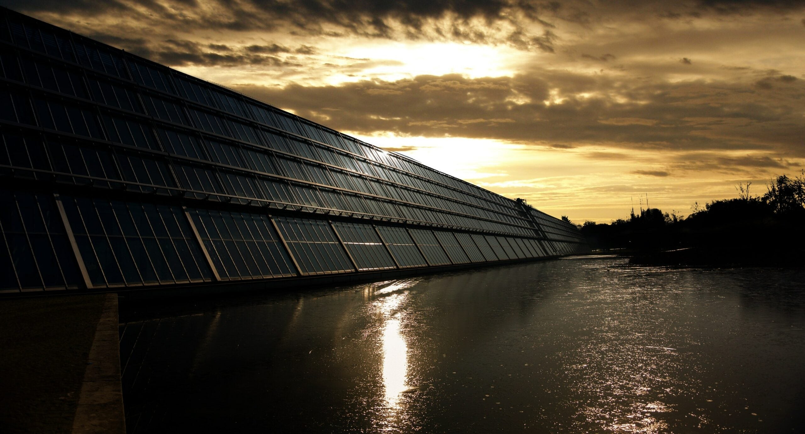 This bacteria could boost solar panels on cloudy days