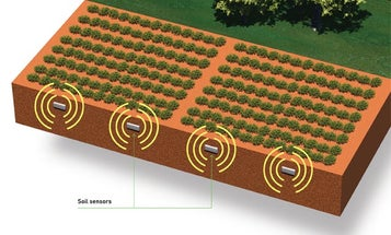 The Future of Farming: Eight Solutions For a Hungry World