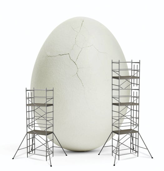 PopSci Q&A: The Quest For The Egg-Free Egg
