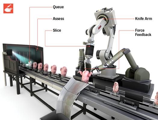How It Works: The Robotic Chicken Butcher