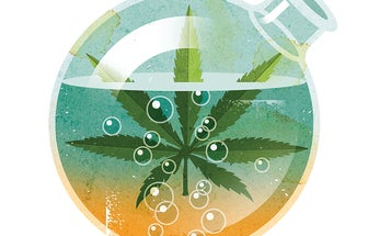 Big Idea For 2016: Marijuana Reaches New Highs