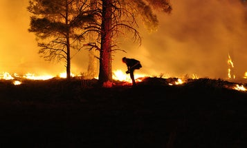 Predicting Wildfires Could Save Lives. So Why Are We So Bad At It?