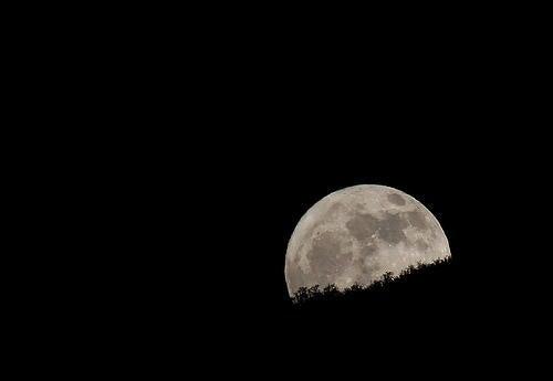 """""""moon"""