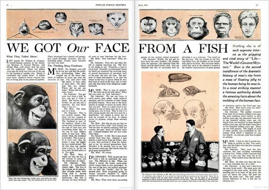 Where We Got Our Faces: July 1931