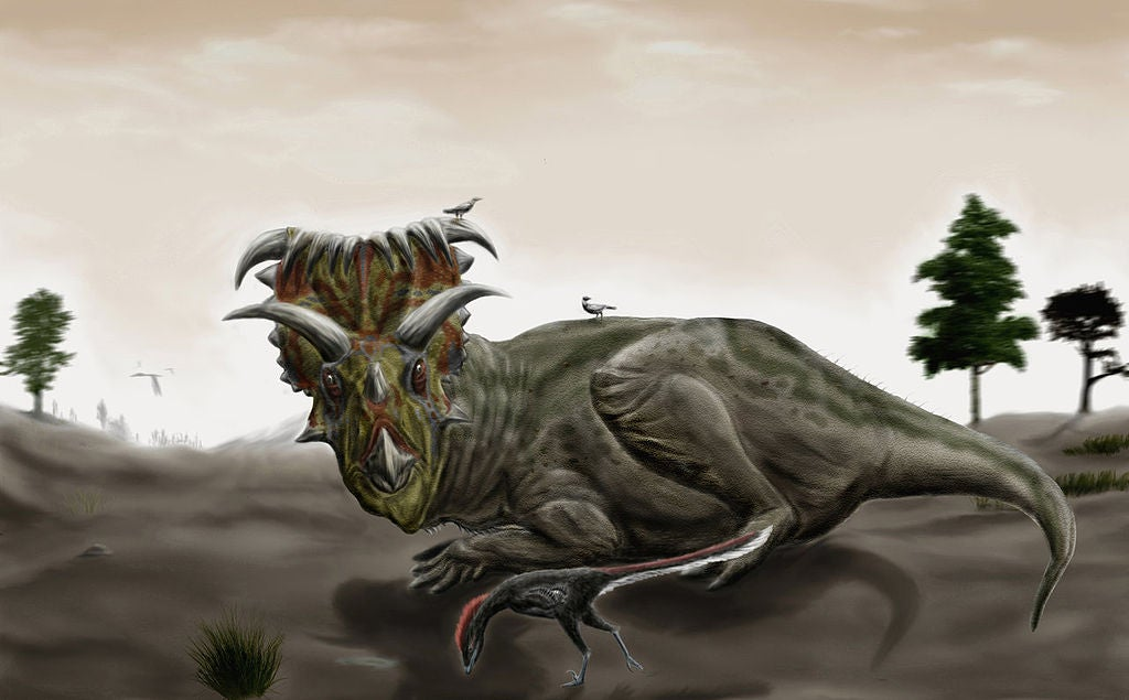 Dinosaur poops show that even herbivores ate shellfish