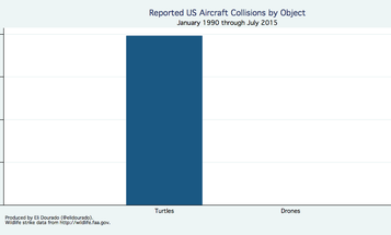Airplanes Hit More Turtles Than Drones