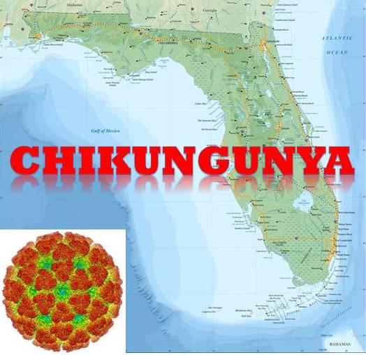The Inconvenient Immigration of Chikungunya