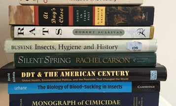 The Infested Summer Reading List