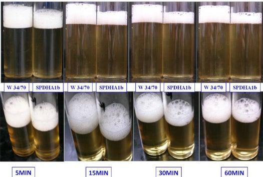 BeerSci: How To Make Beer Foamier