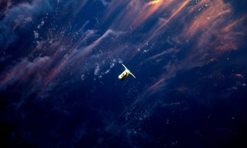 A spacecraft in the sunset, a gold telescope in bloom, and other amazing images of the week