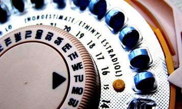Birth Control Pills Shown to Alter Structure of Women's Brains