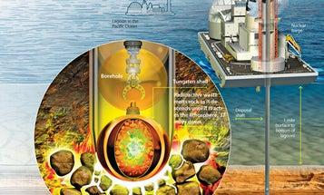 Environmental Visionaries: The Nuclear Revivalist