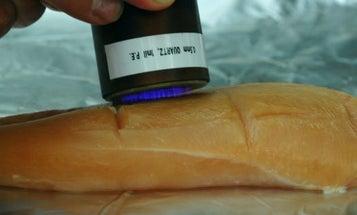 Cool Plasma Torch Kills Germs on Raw Chicken