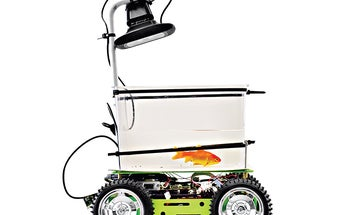 This Robotic Tank Gives Goldfish The Steering Wheel