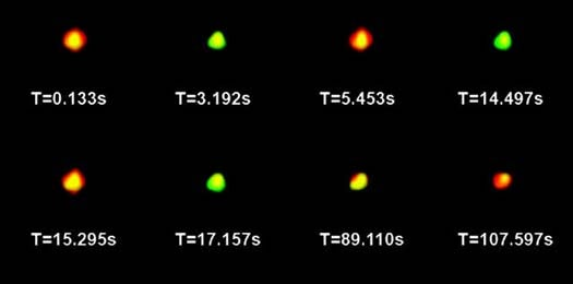 Quantum Dots Can Tag Individual Molecules With A Fluorescent Glow