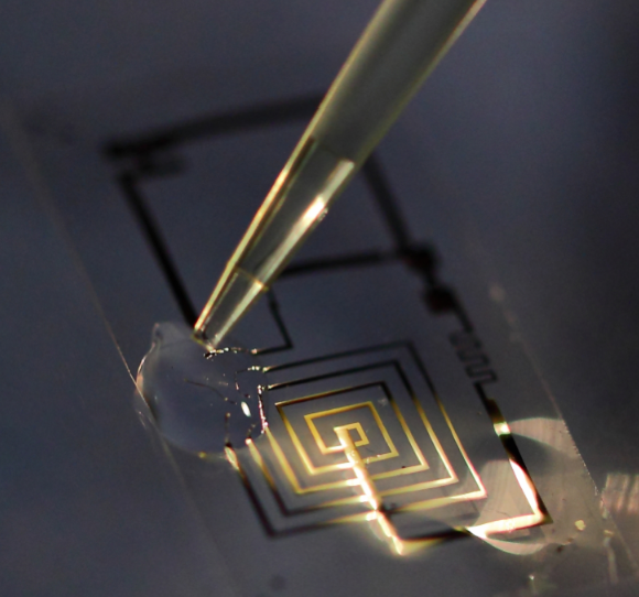 Awesome New Electronics Can Dissolve and Disappear When They're No Longer Needed