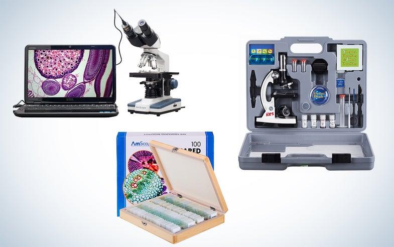 AmScope microscope kits